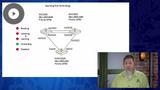 CCNA 2020: Spanning Tree Protocol