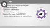 Docker Programmatic Access