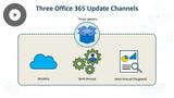 Microsoft 365 Fundamentals: Office 365 & Collaboration
