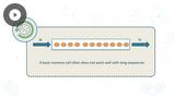 TensorFlow: Word Embeddings & Recurrent Neural Networks