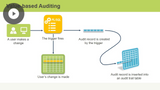 Auditing Features & Configuration