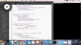 Preparing the Build Folder & Testing