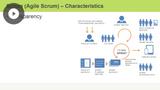 Scrum/Agile Processes
