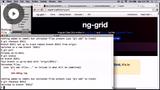 Using NG-Grid in AngularJS