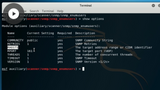 CompTIA PenTest+: Network-Based Exploits